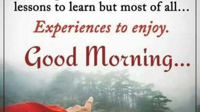 And good morning Images 390x220 - And good morning Images