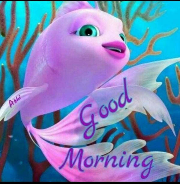 Animals Greeting Best morning Images - Animals Greeting Best morning Images