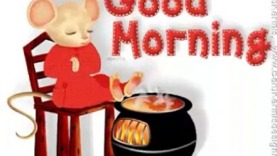Animals Greeting Happy good morning Images 390x220 - Animals Greeting Happy good morning Images