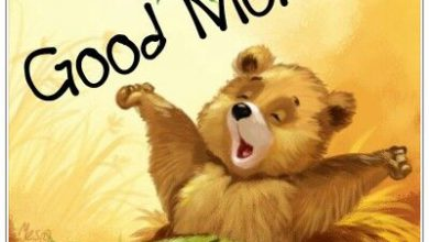 Animals Greeting Morning good morning Images 390x220 - Animals Greeting Morning good morning Images