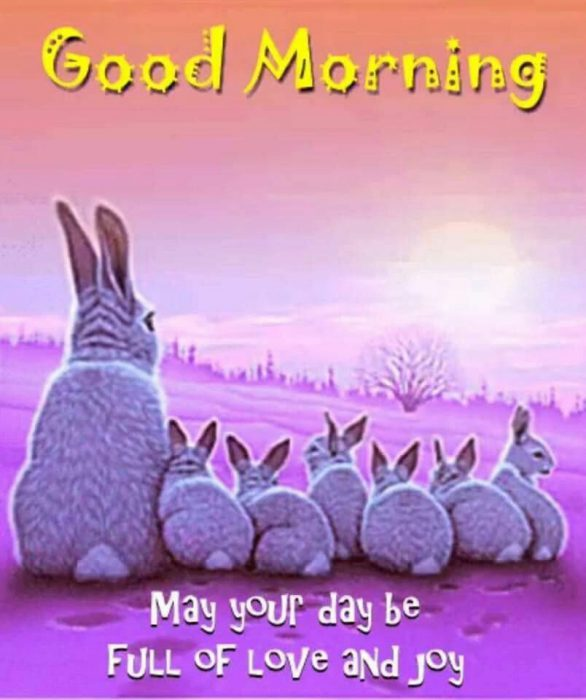 Animals Greeting Sweet morning Images - Animals Greeting Sweet morning Images