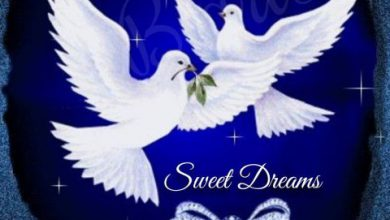 Best good night wishes image 390x220 - Best good night wishes image