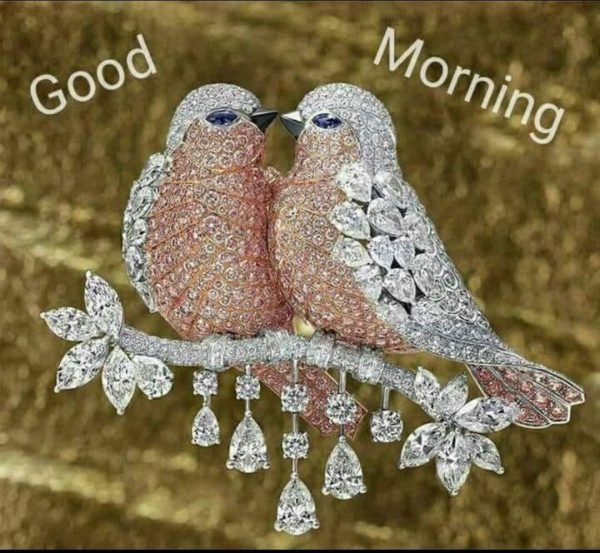 Birds morning greeting images Greetings Images - Birds morning greeting images Greetings Images