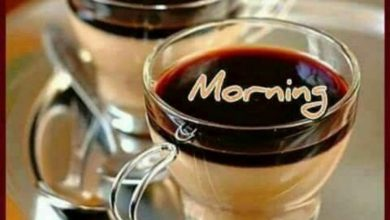 Coffee and Breakfast Greeting Good day news Images 390x220 - Coffee and Breakfast Greeting Good day news Images