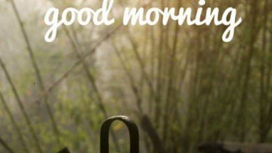Coffee and Breakfast Greeting Good morning and good day Images 390x220 - Coffee and Breakfast Greeting Good morning and good day Images