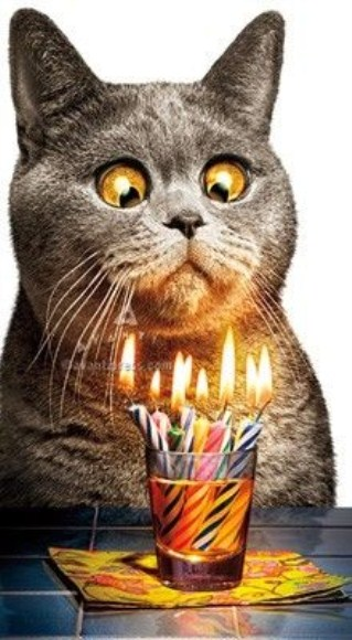 Funny birthday wishes Image - Funny birthday wishes Image