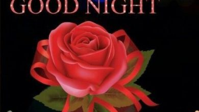 Gn msg for love image 390x220 - Gn msg for love image