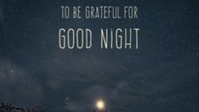 Good night quite image 390x220 - Good night quite image