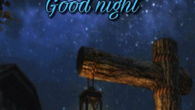 Good night special image image 390x220 - Good night special image image