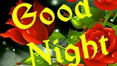 Good night video image 390x220 - Good night video image