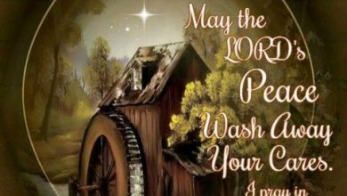 Good night wishes for friends image 390x220 - Good night wishes for friends image