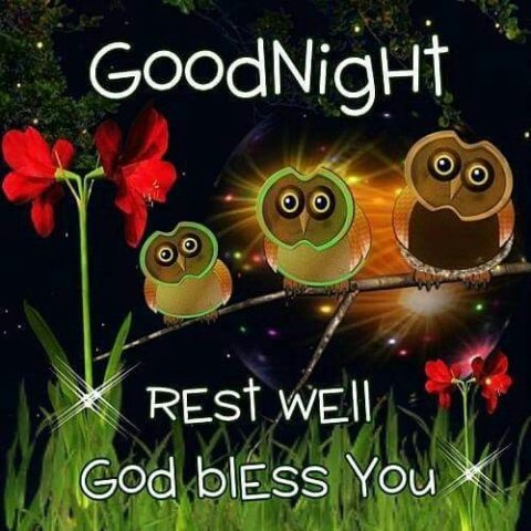 Good night wishes sms image - Good night wishes sms image