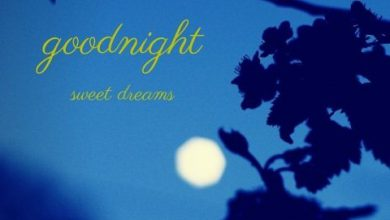 Goodnight or good night dictionary image 390x220 - Goodnight or good night dictionary image