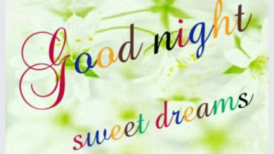 Great good night messages image 390x220 - Great good night messages image