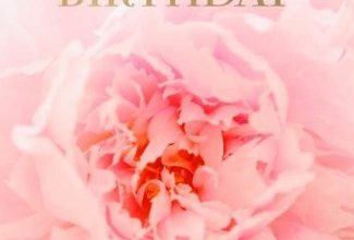 Happy b day best wishes Image 325x220 - Happy b day best wishes Image