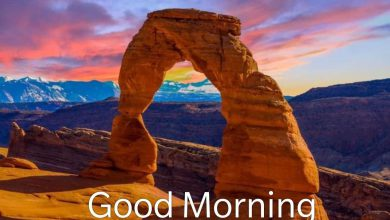 Happy morning waterfall images Greetings Images 390x220 - Happy morning waterfall images Greetings Images