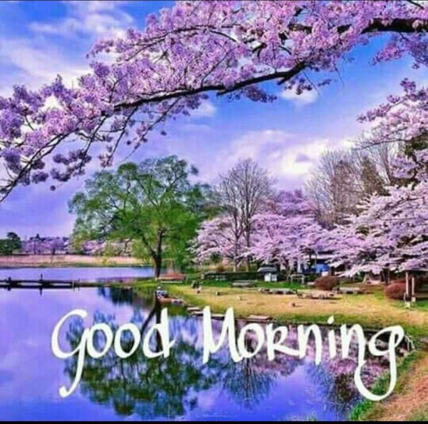 Morning wishes farm photo Greetings Images - Morning wishes farm photo Greetings Images
