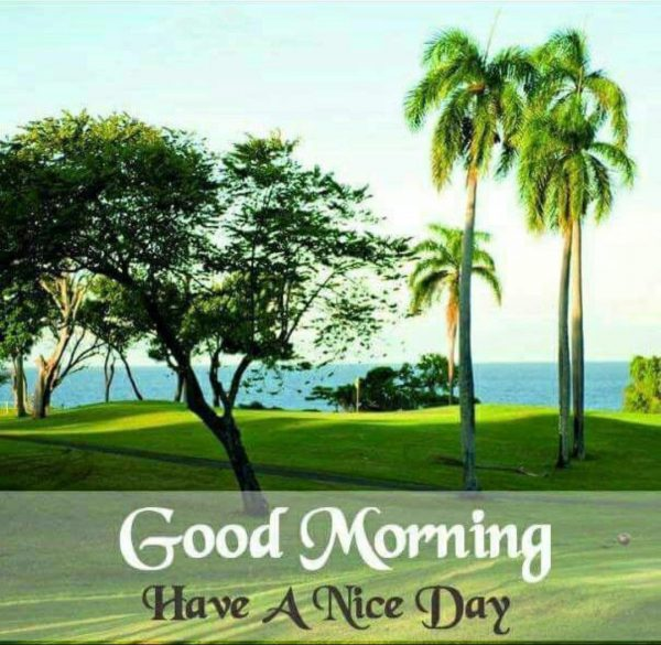 Morning wishes river image Greetings Images - Morning wishes river image Greetings Images