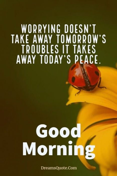 Nice good morning images Images - Nice good morning images Images