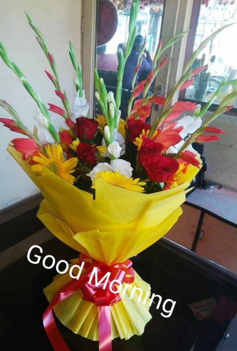 Rose great day morning images Greetings Images - Rose great day morning images Greetings Images