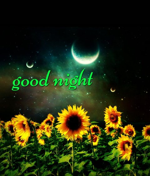 Saying goodnight quotes image - Saying goodnight quotes image