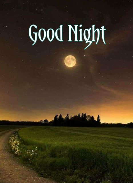 Sweet good night message for my love image - Sweet good night message for my love image