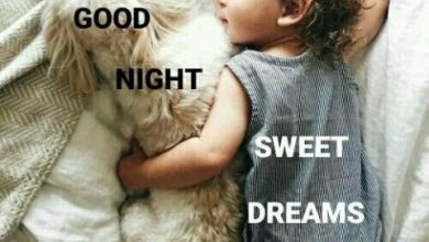 Sweet goodnight text image 390x220 - Sweet goodnight text image