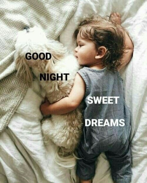 Sweet goodnight text image - Sweet goodnight text image