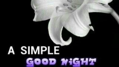 Sweet gud night messages image 390x220 - Sweet gud night messages image