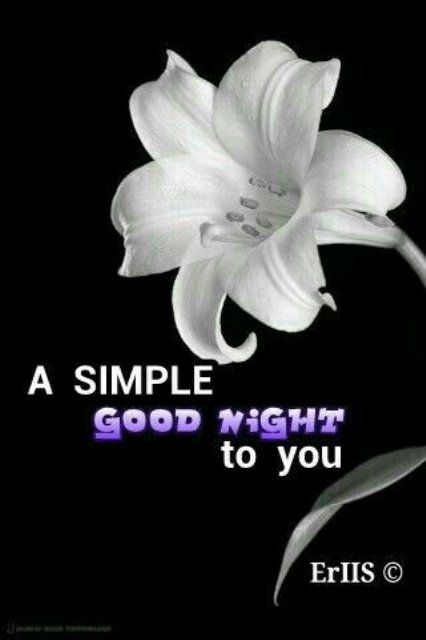Sweet gud night messages image - Sweet gud night messages image