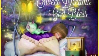 Sweet night message image 390x220 - Sweet night message image