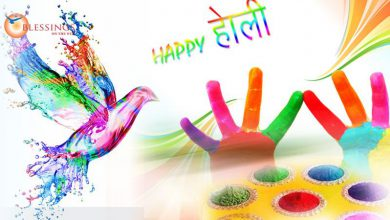 Festival Of Colors India 2019 390x220 - Festival Of Colors India 2019