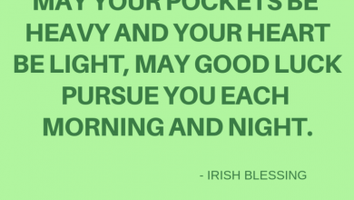 Funny Irish Quotes 390x220 - Funny Irish Quotes