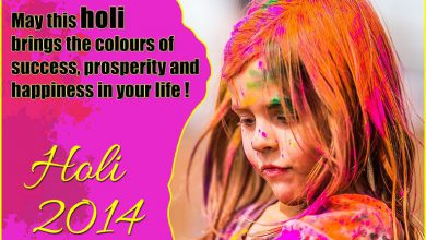 Holi Related Words 390x220 - Holi Related Words