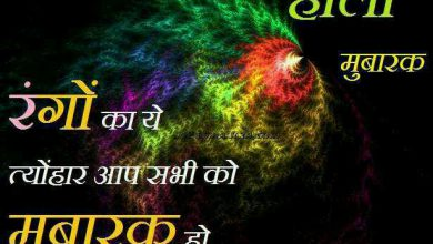 How Is The Holi Festival Celebrated 390x220 - How Is The Holi Festival Celebrated