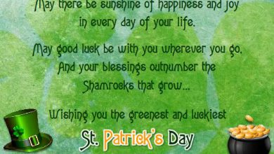 Irish Mother Quotes 390x220 - Irish Mother Quotes