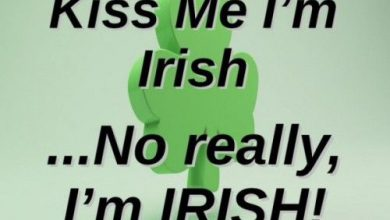 Irish Words And Phrases 390x220 - Irish Words And Phrases