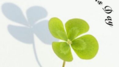 Make Your Own St Patricks Day Cards 390x220 - Make Your Own St Patrick's Day Cards