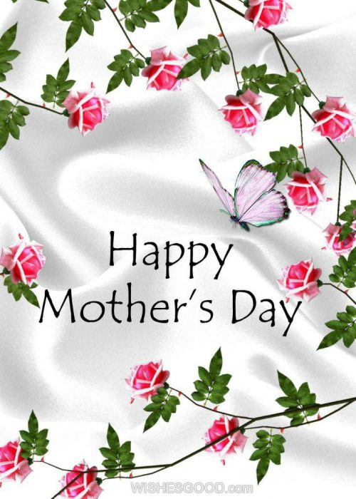 Mother Day Card Greeting Messages - Mother Day Card Greeting Messages