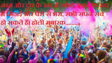 What Does Holi Mean 390x220 - What Does Holi Mean
