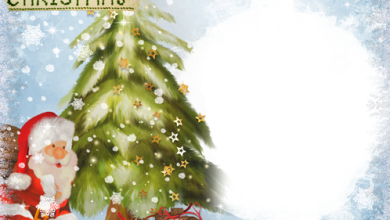 Gifts and Surprises Under Christmas Fir Tree photo frame 390x220 - Gifts and Surprises Under Christmas Fir Tree photo frame