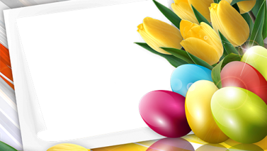 Happy Easterwithspringtulips 1491740694 photo frame 390x220 - Happy Easterwithspringtulips-1491740694 photo frame