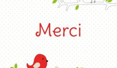 photo merci anniversaire merci image 380x220 - photo merci anniversaire merci image